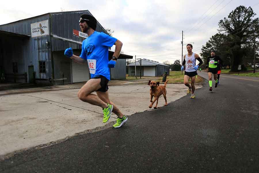 Ludivine chien court demi marathon et termine 7ème
