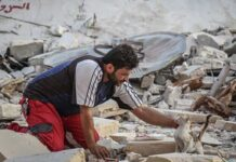 Mohammad Alaa Aljaleel homme retourne zone guerre sauver chats abandonnés