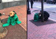 Kristina femme met propre veste couvrir chien froid