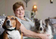 À 70 ans, cette femme vivait avec ses chiens dans une voiture