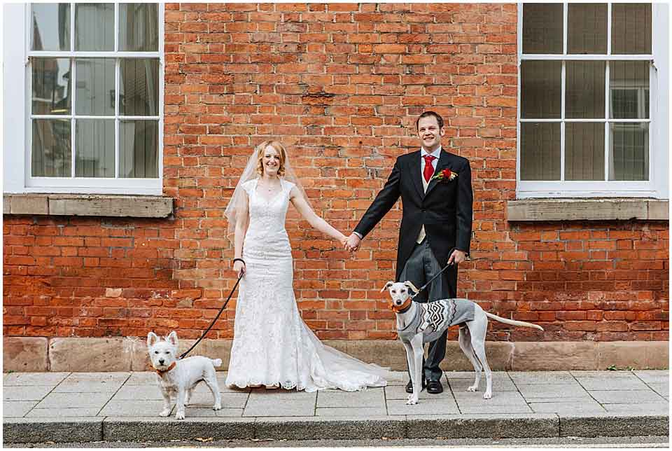 William chien lévrier saluki accompagne famille qui mariage