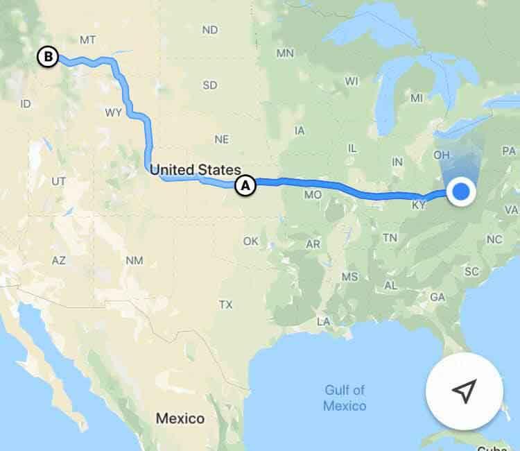 Zeus pitbull volé retrouve famille après voyage 3200 km