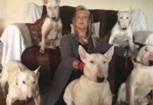 Liz Haslam femme choisit chiens sauvés