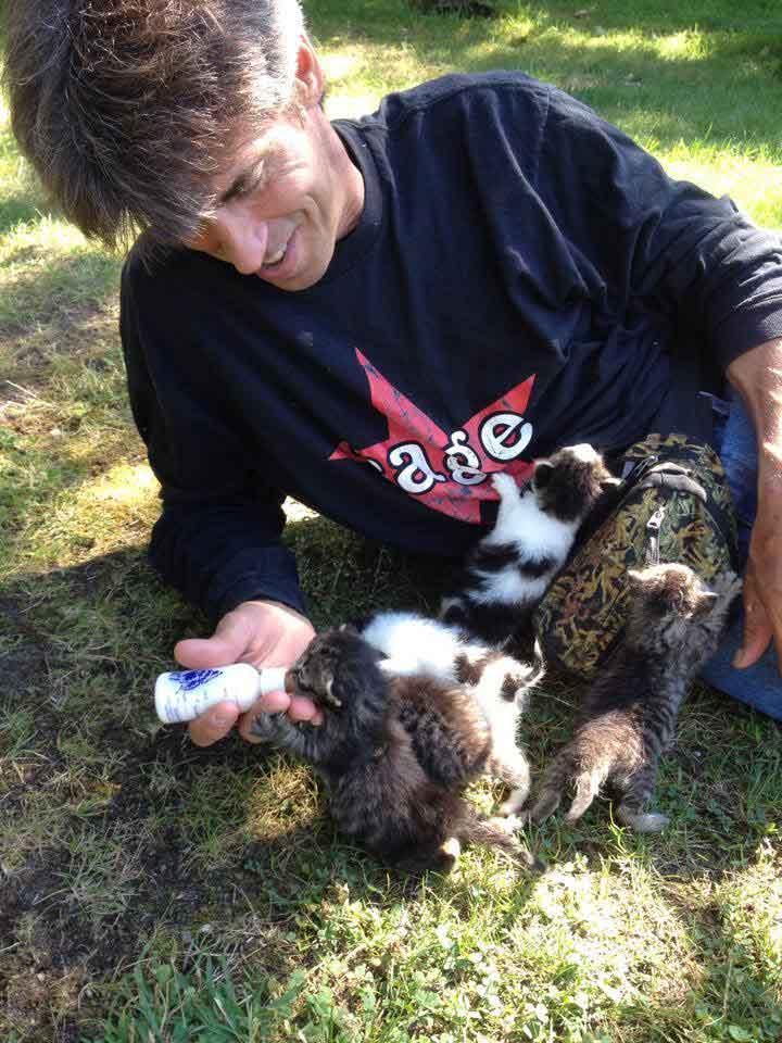 Chris Arsenault homme crée sanctuaire chats