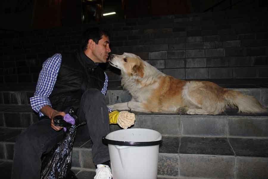 Fernando homme quitte travail nourrir chiens errants