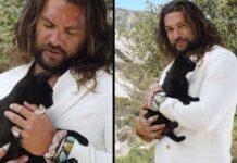 Jason Momoa chat noir