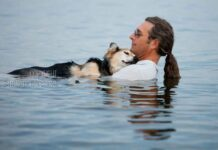 John Unger homme nage chien