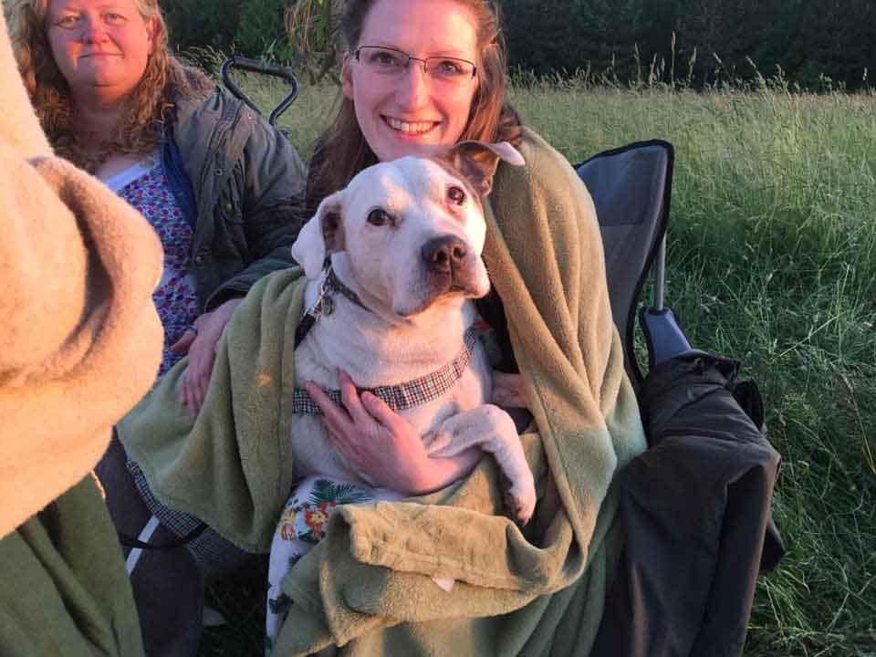 Nicola Coyle infirmière retraite hospice chiens abandonnés