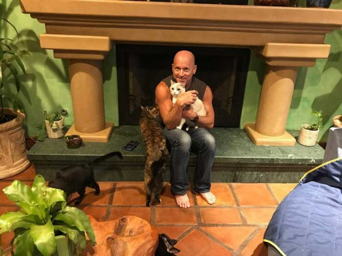 Peter Cohen homme maison chat paradis