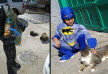 Shon Griffin garçon super pouvoirs sauve chats errants