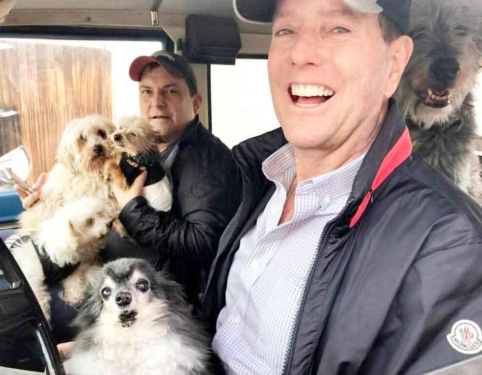 Steve Grieg homme deuil adopte chiens âgés
