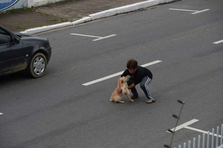 Jean Fernandes Garçon arrête circulation secourir chien accidenté