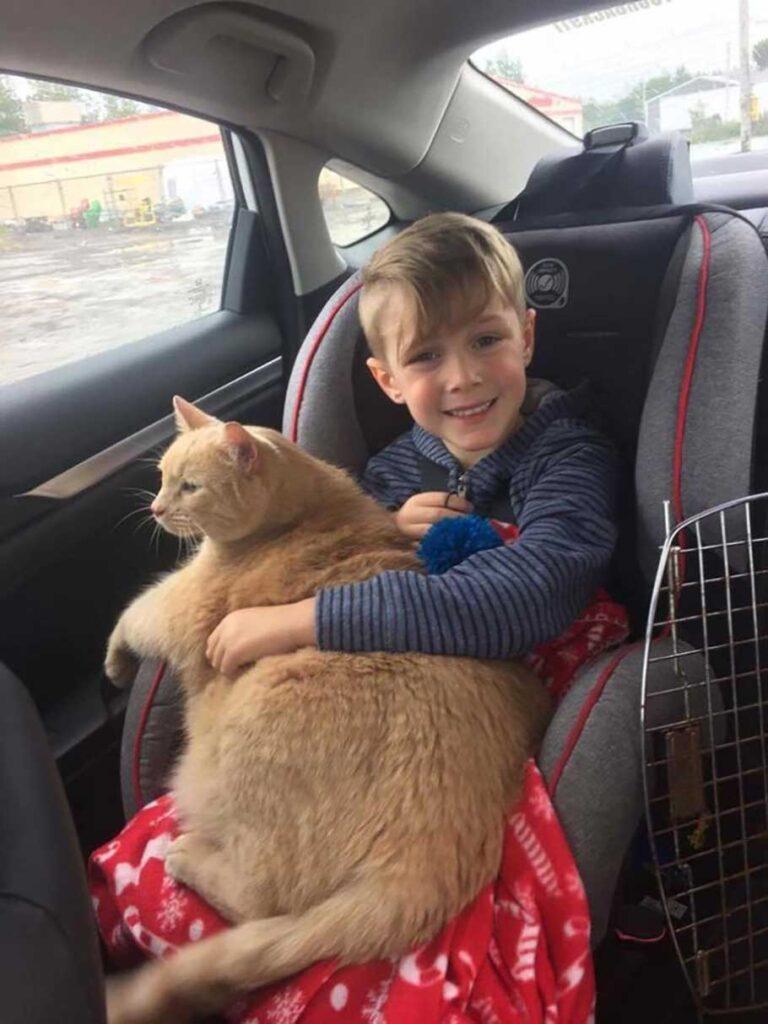 Sa maman lui a permis de choisir un chat