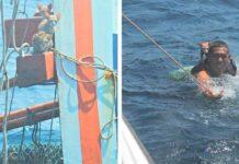 Thaïlande sauvent 4 chats navire couler
