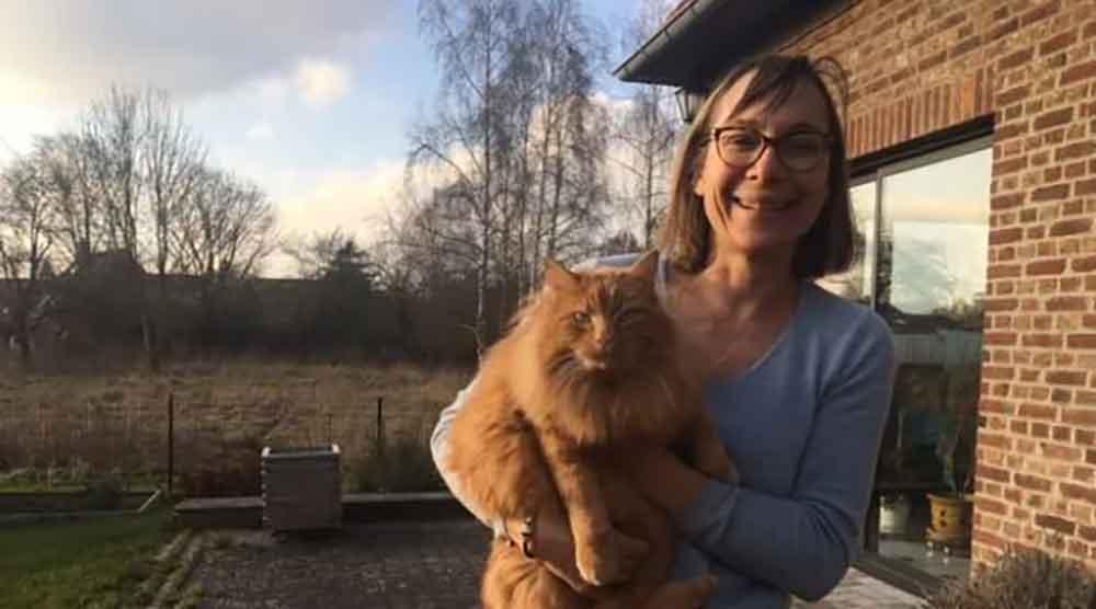 chat parcourt 800 km covoiturage retour maison