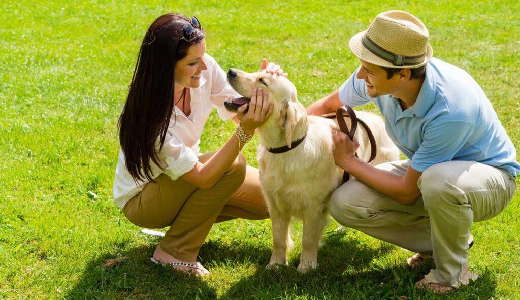 entrainer chien faire besoins extérieur