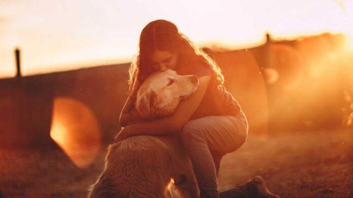 races de chiens pour le soutien émotionnel