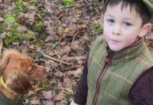 histoire leon autiste enfant parler chien fern