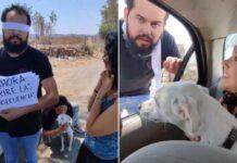 femme laisse petit ami abandonnant chien race