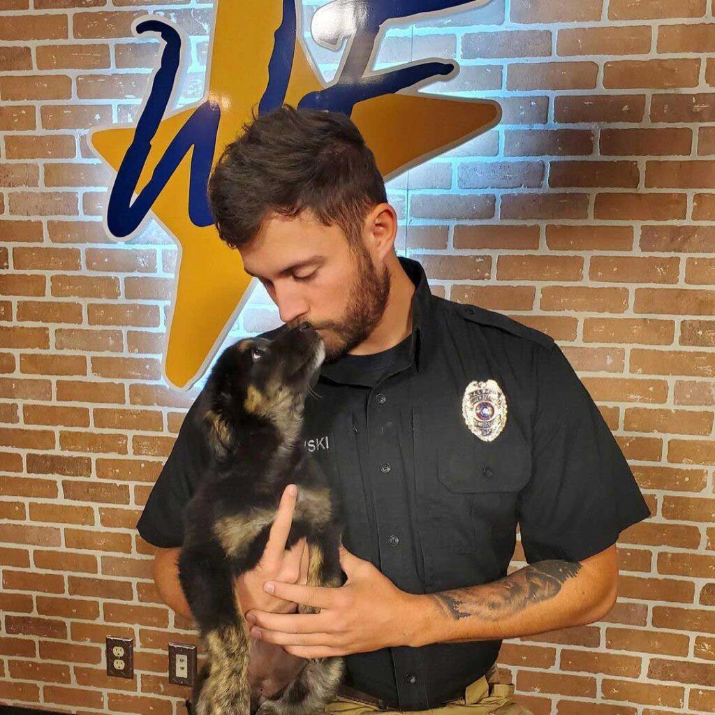 beau travailleur refuge reçoit attention adoption chiens