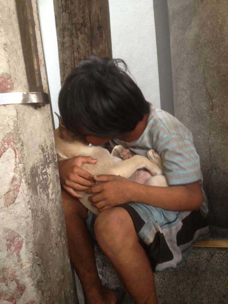 enfant abandonné trouve confort chien protège