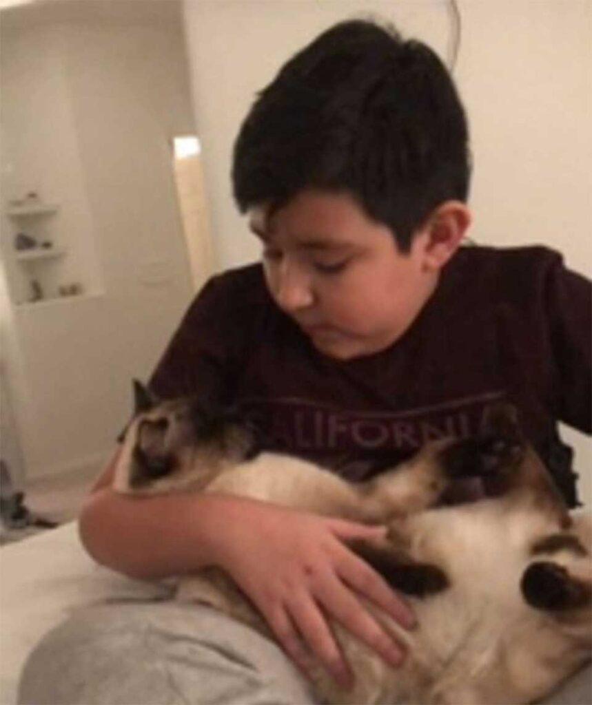 garçon ne peut pas retenir larmes rencontrer chat